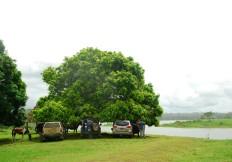 Conducir o caminar hasta el lago desde la zona de recepción